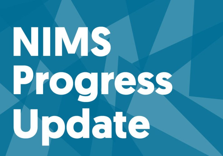 Nims-progress-update-714x500